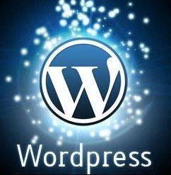 social blogging for business